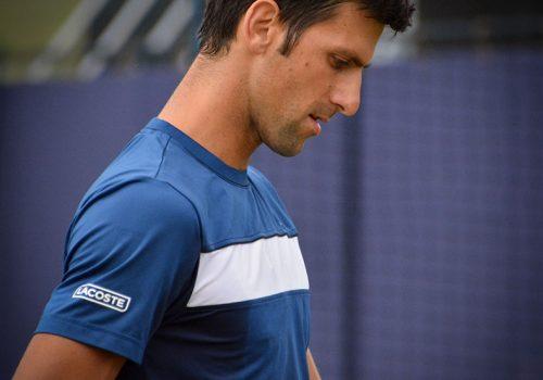 Novak Đoković, foto: Carine06/Wikimedia Commons