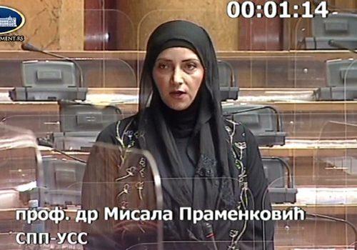 Dr. Pramenković: Obezbjediti veću zastupljenost žena u upravnim i nadzornim odborima_61020397ea708.jpeg
