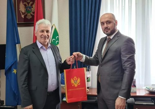 Hadžić i Husović o jačanju saradnje sa dijasporom_60ecebd42b19a.jpeg