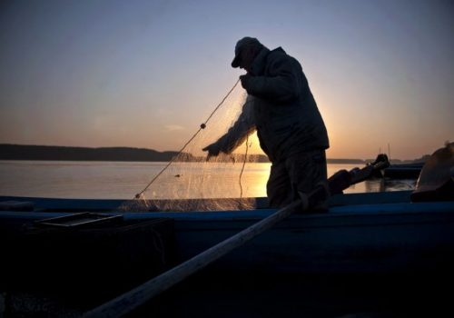 Izlov u Crnom moru postao kritičan_60c0306591a6e.jpeg