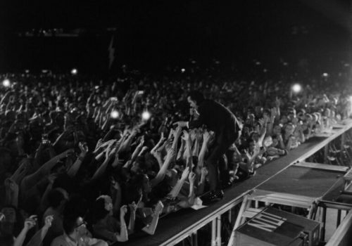 Počela prodaja festivalskih ulaznica za EXIT 2022, prvi headlineri Nick Cave & The Bad Seeds i Boris Brejcha!_6132e8054db5f.jpeg