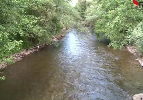 Ribolovci čuvaju rijeku u kojoj se mrijesti riba_60b43bea82f60.jpeg
