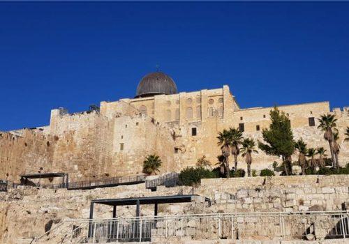 Suočavanje sa situacijom — vrijeme je za novi početak za Palestinu_60556bffa7f7c.jpeg
